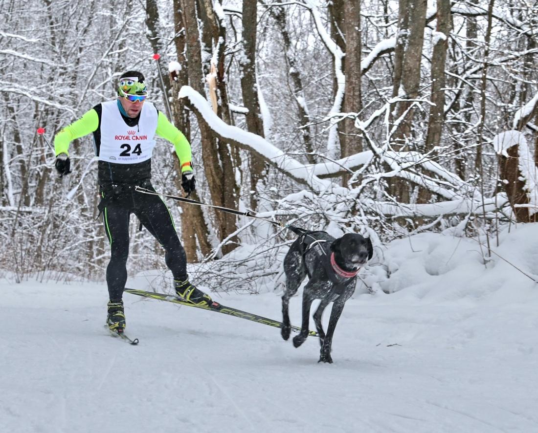 2018, 01, 20-21_Чемпионат СПб по собакам (03).jpg